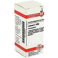LEDUM C 1000 Globuli 10 g preisvergleich bei billige-tabletten.eu