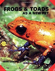Frogs and Toads as a New Pet (Guide to Owning A...)
