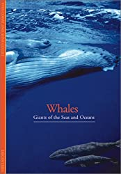Whales: Giants of the Seas and Oceans (Discoveries S.)