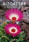 Aizoaceae. Die Mittagsblume Südafrikas