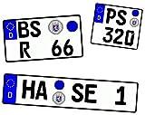 Wunschkennzeichen für Modellauto und Motorrad hochglänzend und selbstklebend für alle Maßstäbe 1/10 1/12 1/18 1/24 1/32 1/43 1/64 1/72 1/87