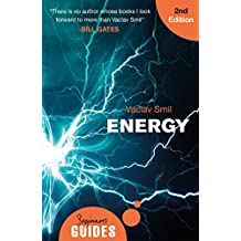 Energy: A Beginner's Guide (Beginner's Guides) (English Edition)