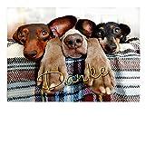 DigitalOase Dankeskarte Geburtstagskarte Abschiedskarte Grußkarte Format DIN A4 A3 Klappkarte PanoramaUmschlag #DOGS Tiere Hunde