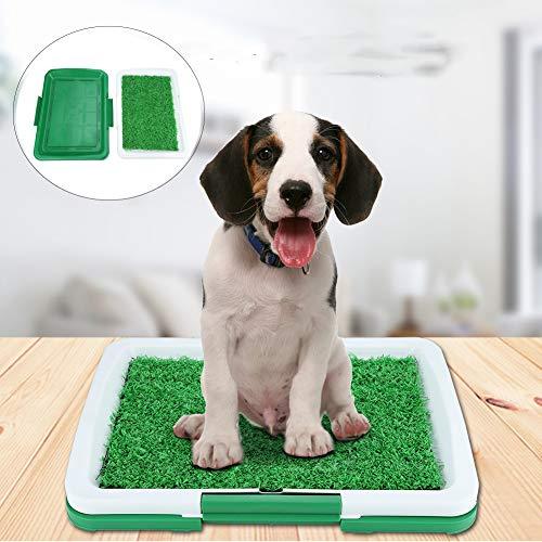 EBTOOLS 2 Schichten Welpentoilette Haustier Töpfchen Matte Hundetoilette für Toiletten-WC-Training, Mesh + Auffangwanne, 46 * 34 * 5cm