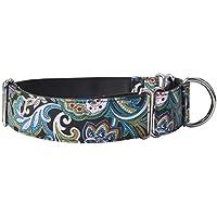 EXPAWLORER Martingale - Collar para Perros (Nailon, Resistente)
