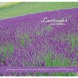 Lavender: Growing & Using Lavender for Fragrance, Mood & Body Care