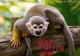 Welt der Affen (Wandkalender 2019 DIN A4 quer): Faszinierende Zusammenstellung der verschiedenen Affenarten unseres Planeten (Monatskalender, 14 Seiten) (CALVENDO Tiere)