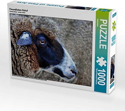 CALVENDO Puzzle Freundliches Schaf Schaf Schaf 1000 Teile Lege-Grösse 64 x 48 cm Foto-Puzzle Bild Von | Une Performance Fiable  3069a4