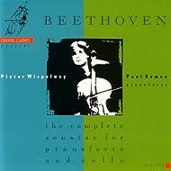 Beethoven : sonatas for pianoforte and cello