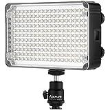 Aputure AL-H198C CRI 95+ LED Antorcha de cámara - Bolsa de transporte