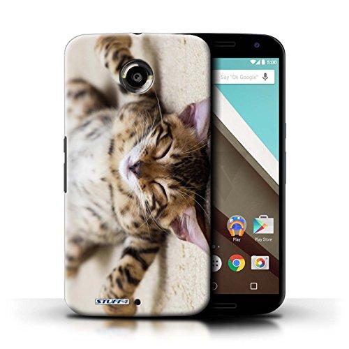 Kobalt® Imprimé Etui / Coque pour Motorola Nexus 6 / Blanc et moelleux conception / Série Chatons mignons Chaton Parasseux