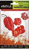 Semillas Hortícolas - Pimiento Habanero Red Caribbean - Batlle
