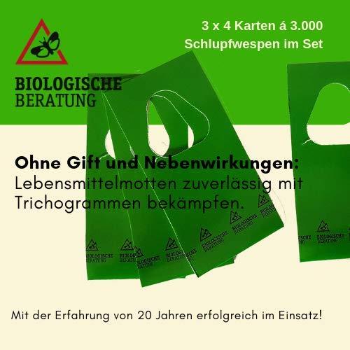 Biologische Beratung Schlupfwespen gegen Motten - natürliche, biologische Bekämpfung von Dörrobst- und Lebensmittelmotten, S - 3x4 Karten