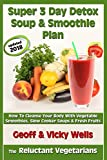 Super 3 Day Detox Soup & Smoothie Plan: How to Cleanse Your Body