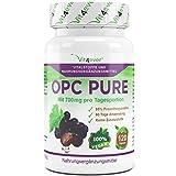 OPC Pure, 700 mg pro Tag, 120 vegane Kapseln mit jeweils 350 mg Traubenkernextrakt, keine Zusatzstoffe, hochdosiert mit 330mg OPC Gehalt pro Kapsel, 60 Tage Anwendung, Antioxidantien, Vit4ever