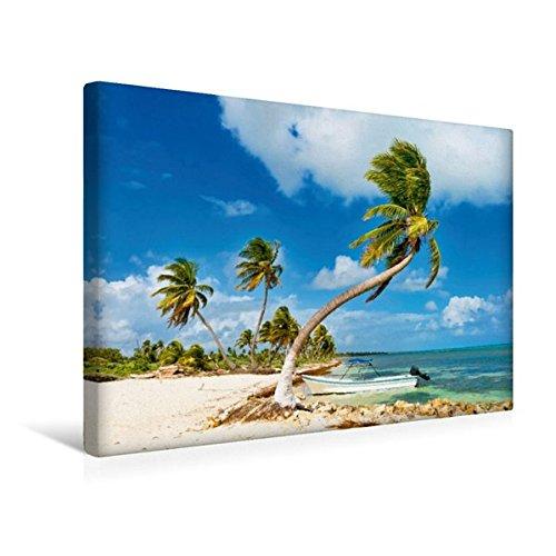Calvendo Premium Textil-Leinwand 45 cm x 30 cm Quer, Ein Kleines Boot ankert vor Einem Traumhaften Palmenstrand an der Costa Maya   Wandbild, Bild auf Maya, Quintana Roo, Mexiko Orte Orte