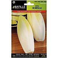 Semillas Hortícolas - Endivia de Bruselas - Batlle