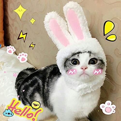 BWOGUE süßes Kostüm Kaninchen Hut mit Ohren für Katzen und kleine Hunde Party Kostüm Halloween Zubehör Kopfbedeckung (Für Halloween-kostüme Kaninchen)