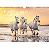 Pferdezauber DIN A3 Kalender 2020 Pferde und Fohlen - Seelenzauber