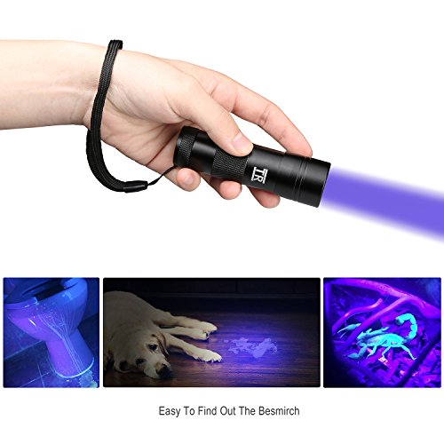 UV Torch ...