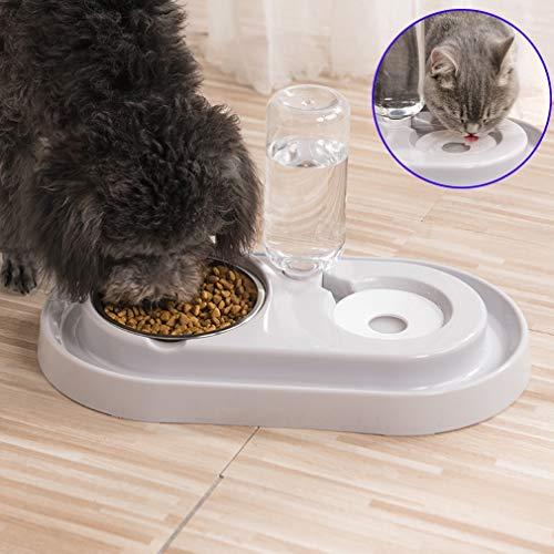 Haolv Doppel Hund Katze Schüsseln Premium Edelstahl Hundenäpfe No-Spill Harz Station, Tierfutter Wasser Feeder mit Automatische Wasserflasche