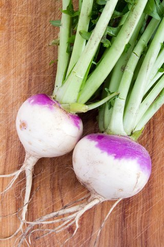5LBS Purple Top Turnip Deer Food Plot Seeds Food Plot Non-GMO Vegetable Garden Micro Greens Seeds Whitetail Deer Green Goose