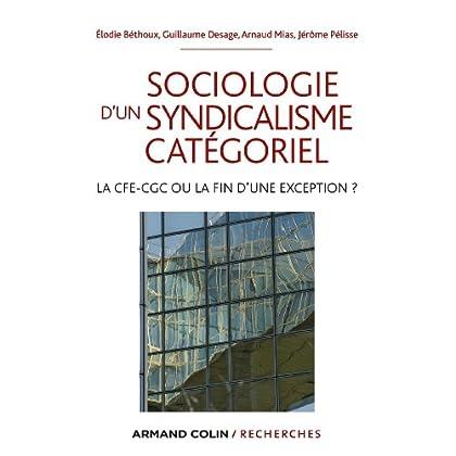 Sociologie d'un syndicalisme catégoriel : La CFE-CGC ou la fin d'une exception ? (Hors Collection)