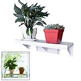 Easy Eco Life groß Leistungsstark Fensterbrett Regal Veg, Rack für Pflanzen Kräutertöpfe/39x 14cm bis Halt 10kg/Wiederverwendbar Abnehmbar mit Keine Rückstände/Schäden Freie Installation