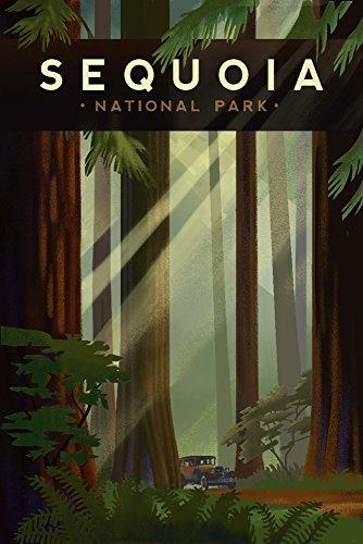 Sequoia National Park, California - Redwood Forest - Lithographie géométrique Antique 9 x 12 Art Print multicolore