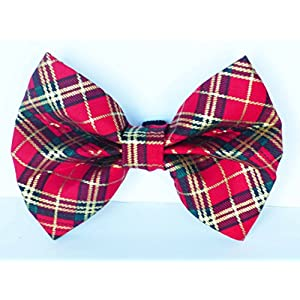 Bow-Bow-Ties-for-Dog-Collar-Winter-Robin