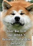 INDIGOS UG - Türschild FunSchild - SE76 DIN A5 ACHTUNG Hund AKITA INU - für Käfig, Zwinger, Haustier, Tür, Tier, Aquarium - aus hochwertigem Alu-Dibond beschriftet sehr stabil
