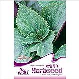 Hohe Qualität 30 PC Perilla Seed japanische Shiso Frutescens Garden Supplies Perilla sät Double Color