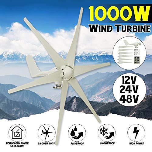 SISHUINIANHUA 1000W 12V 24 V 48 Volt 6 Fibra di Nylon Lama Orizzontale Turbine eoliche domestiche Generatore Eolico Potenza Mulino a Vento Energia Turbine Carica,48v