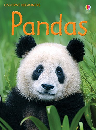 Pandas: For tablet devices (Usborne Beginners)