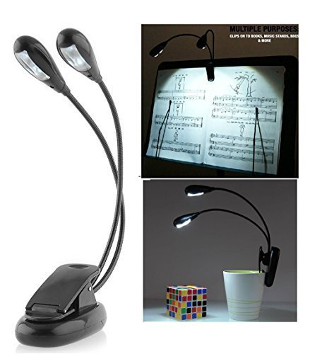 Intsun Adjustable Gooseneck Light Clip on LED Lamp, Mini Super Bright Clip Desk Light Lamp with Double Headed, LED Book Reading Light - Comes With USB Cable, Best Suited For: Music Stands, Reading, BBQ, Grilling, Desk & Travel - Used By Musicians, Readers, Artists, Chefs - Fully Portable(Black) Test