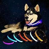 Superhelle LED-Hundehalsband, Solar- und USB-wiederaufladbar, blinkende Sicherheitsleine – reflektierendes Hundehalsband, verstellbare Haustier-Halskette, wasserabweisend, hält Hund bei Nacht sichtbar