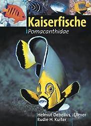 Kaiserfische: Pomacanthidae