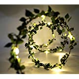 Glimmer Lightings Green Leaf Garland Decoration LED Rice Light Battery Operated, Copper Wire (5 m)