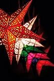 Papierstern Mono Red Weihnachtsstern für Papierstern Mono Red Weihnachtsstern