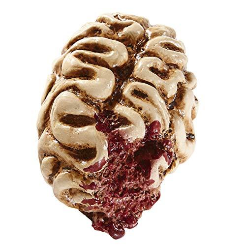 Terrorífica decoración de cerebro humano | Aprox. 16 cm de altura | Escalofriante decoración para fiesta de halloween cerebro | EL centro de las miradas para fiestas terroríficas y fiestas de terror