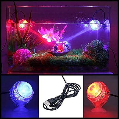 WANGIRL 4 Pièces Lampe sous-Marine de LED D'intérieur Lumière LED D'aquarium Imperméable pour La Lampe de Tache Submersible D'aquarium de Réservoir de Poissons de Récif de Corail