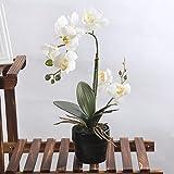 Künstliche Blumen Orchidee Phalaenopsis mit Vase für Garten/Haus/Büro Deko LianLe (Weiß)