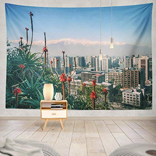 gthytjhv Tapisserie Decor Collection, Andes Plants and City Santa Hill Santiago Santiago City Landscape Bedroom Living Room Dorm Wall Hanging Tapestry Polyester & Polyester Blend -