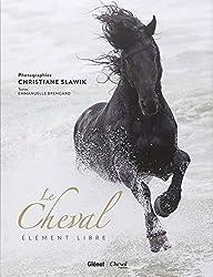 Le cheval : Elément libre