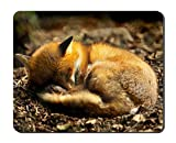 Animal Close Up Fox Curled Up to Sleeping Animal Picture Game Office Mouse Pad (8.2x10.2inches)