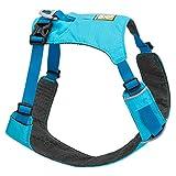 Ruffwear Leichtgewicht-Hundegeschirr, Mittelgroße Hunderassen, Größenverstellbar, Größe: M, Blau (Blue Atoll), Hi & Light Harness, 3082-409M