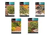 Lote 5 sobres de semillas aromáticas (Tomillo, Romero, Lavanda, Mostaza blanca, Orégano)