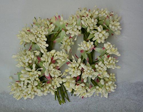 72-fiori-bacche-pistilli-x-sacchetti-bomboniere-diametro-20-cm-lunghezza-10-cm-panna