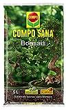Compo Sana Bonsais 5 L, 37x23x5.5 cm