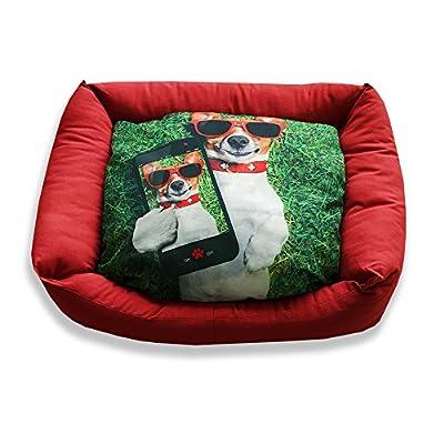 DAGOSTINO HOME Cama cuna tridimensional para mascotas I-DOGGY - (Todas las medidas)